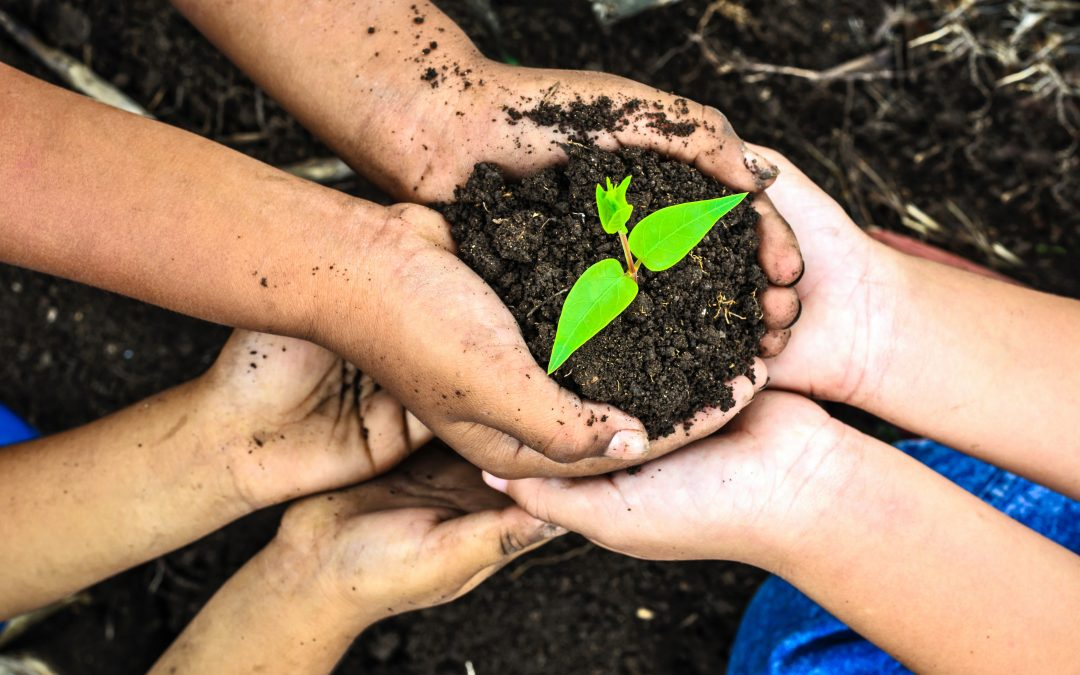 Earth Day Activities For Families To Do At Home